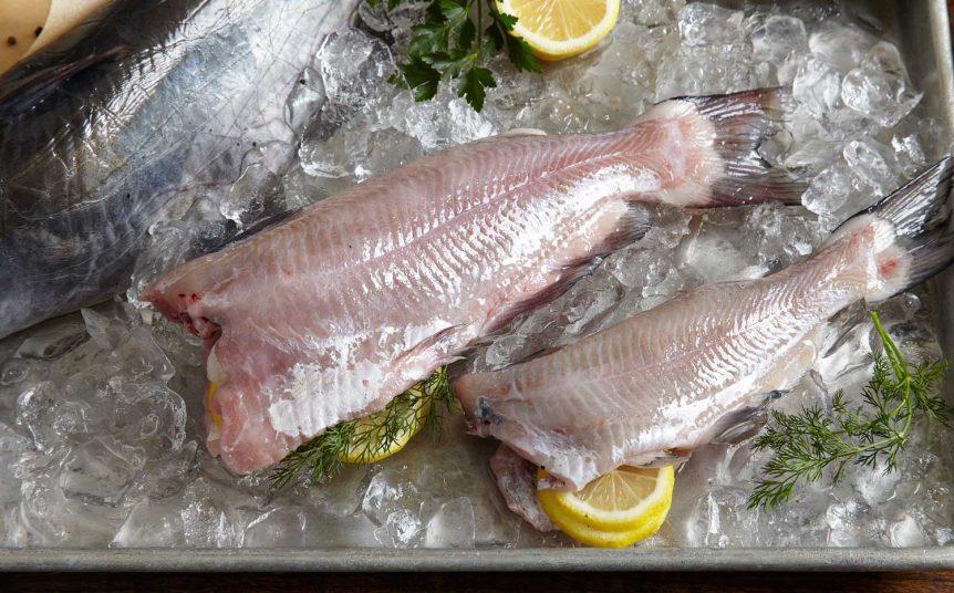 Harvest-Select-Whole-Catfish2